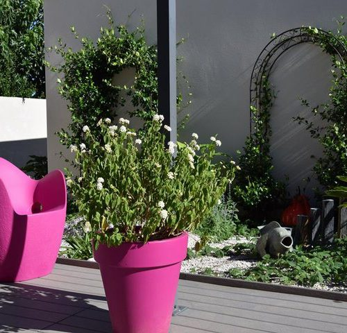 Amenagement jardin baillargues