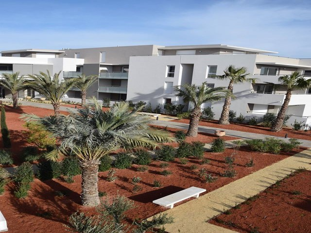 Amenagement exterieur la movida boirargues paysagiste deco for Amenagement exterieur paysagiste