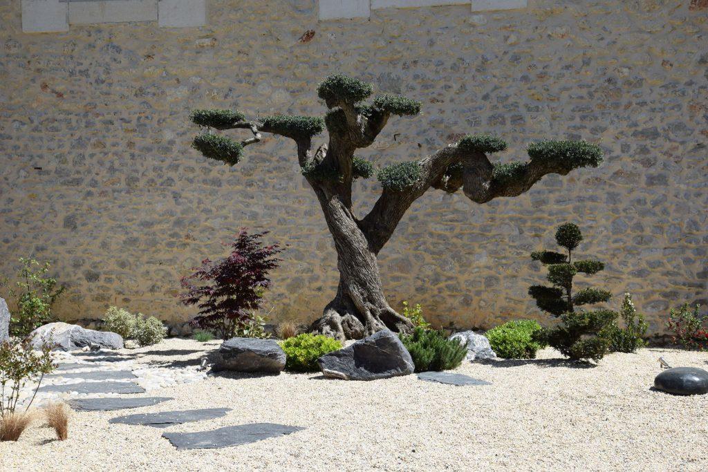 Decoration jardin montpellier deco jardin nimes bordure jardin - Mobilier de jardin montpellier ...