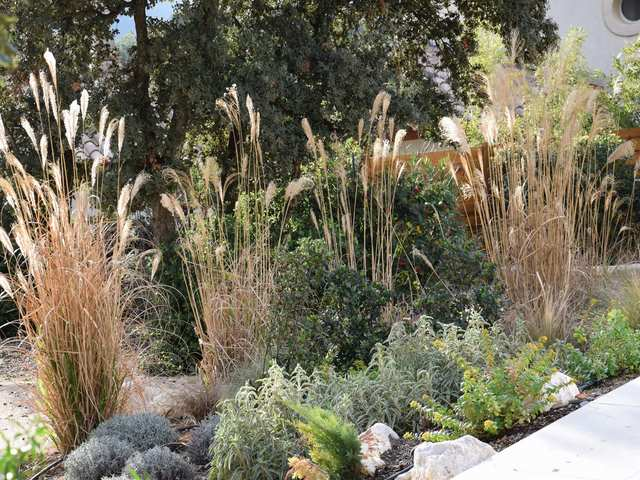 jardin mediterranéen