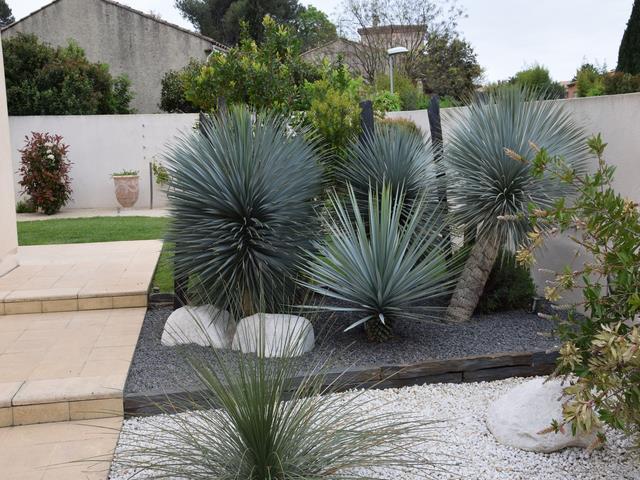 Paysagiste Herault Bordure Jardin Montpellier Paysagiste