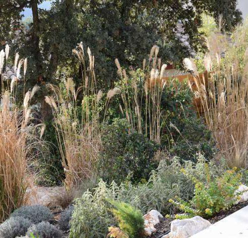 Deco jardin Entre terre et eau