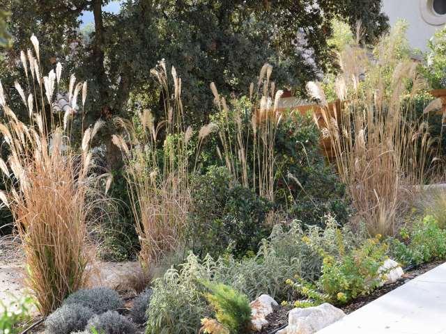 deco jardin entre terre et eau est une r alisation de orphis paysagiste. Black Bedroom Furniture Sets. Home Design Ideas