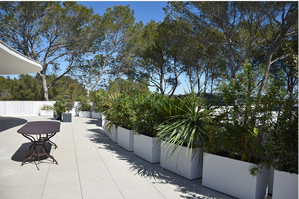 Actualites paysagiste amenagement terrasse amenagement jardin