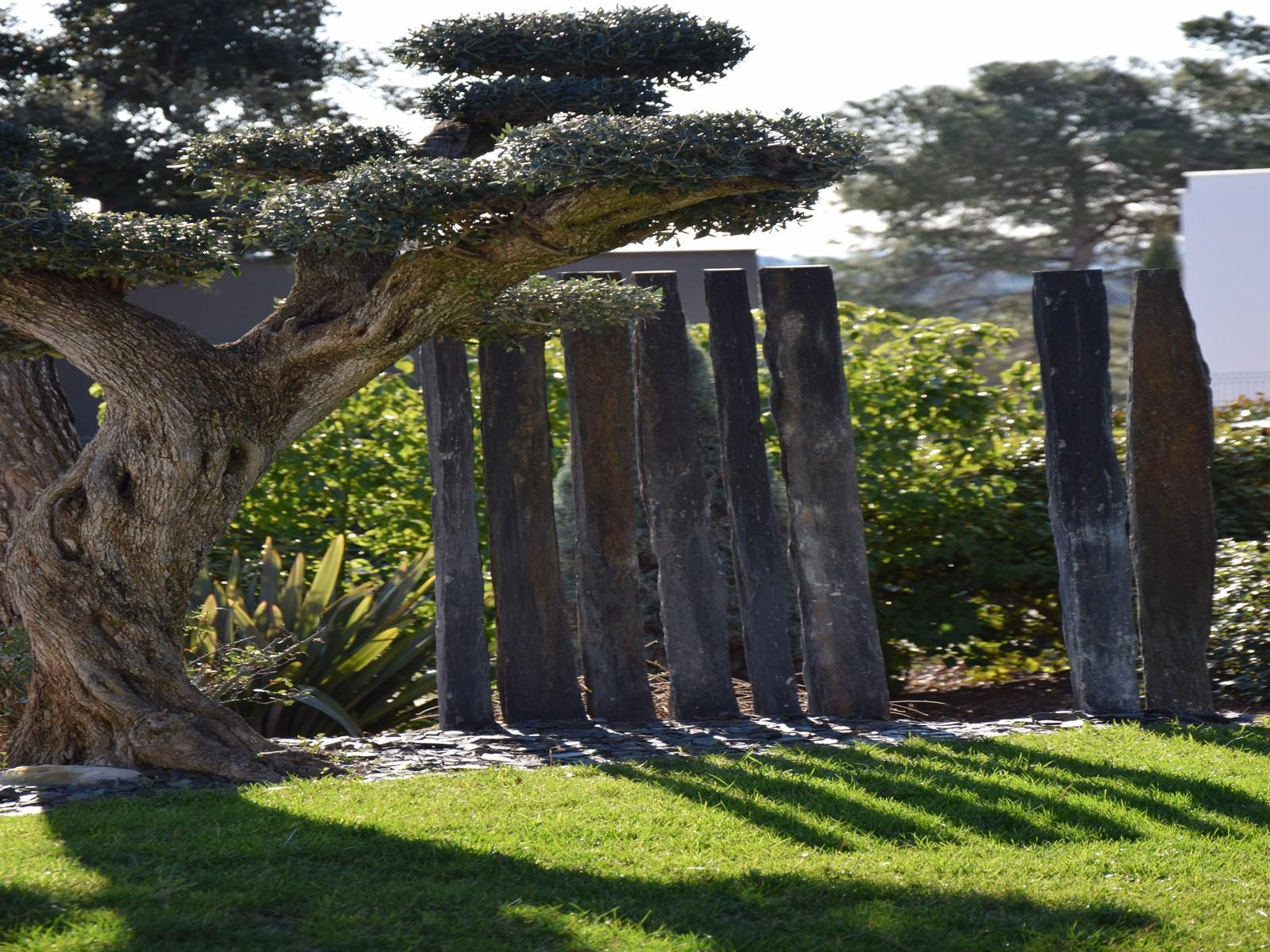 Photo Petit Jardin Exotique architecte paysagiste montpellier jardin exotique